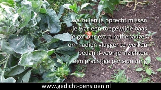 Grappige Citaten Pensioen : Pensioen bedankt teksten en dankwoord bij pensionering